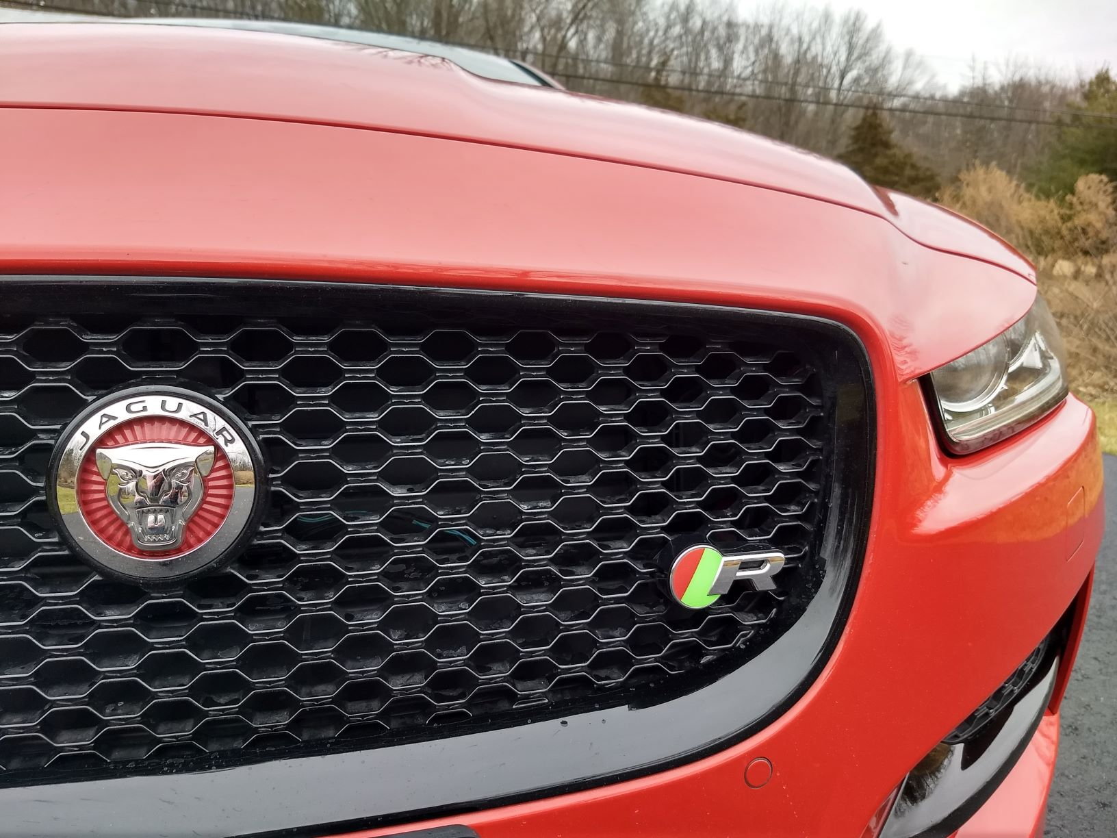Grille and Badge - Medium - Copy.jpg